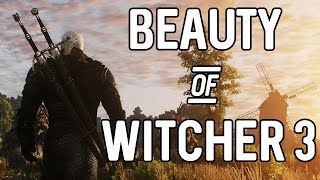 The Beauty of The Witcher 3