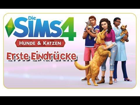 Die Sims 4: Hunde & Katzen - Erste Eindrücke [CAS, Möbel, Katzen, Hunde & more]