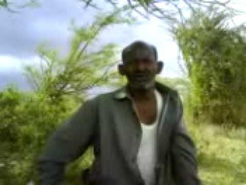 dayrwaa-Hamigii yurub iyo hurdadii afrika