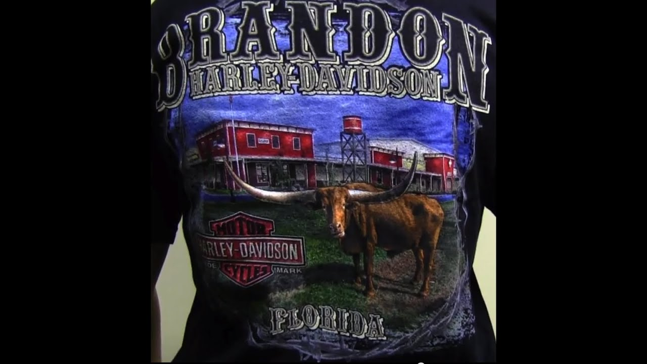 Daytona Harley Davidson T Shirts