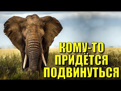 Россия возвращает себе позиции СССР