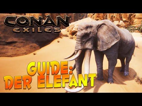 CONAN EXILES GUIDE ⚔️ Elefant - Fundort, Futter, mächtiger Elefant & Mammut zähmen ⚔️