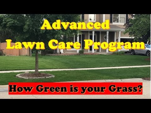 Best Lawn Care Schedule for ADVANCED |  Best Lawn Care Program (timing + schedule)