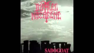 Watch Impaled Nazarene Sadogoat video