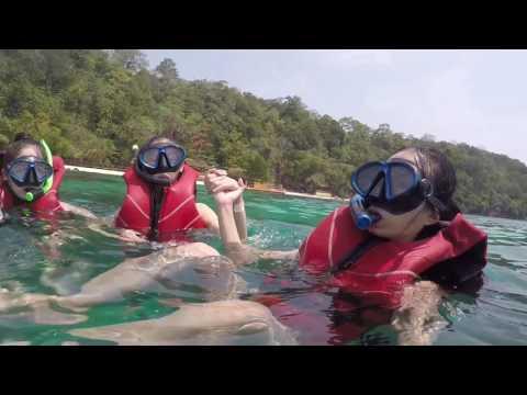 Malaysia-Palau Payar Marine Park Dive 芭雅島