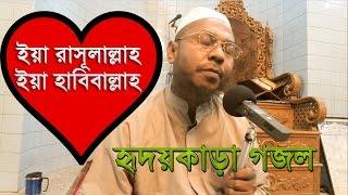 ইয়া রাসূলাল্লাহ, ইয়া হাবিবাল্লাহ- New Bangla Islamic song/ Bangla gojol (naat)