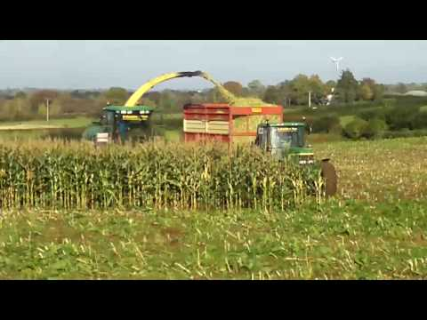 Crop Sweeper Corn Reel http://wn.com/CCS_Maize_Havesting