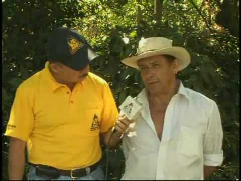 DESARROLLO DE LA AGRICULTURA COLOMBIANA ICA