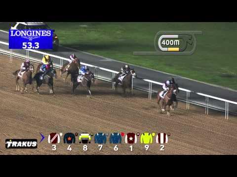 Vidéo de la course PMU THE LINCOLN MKT TROPHY