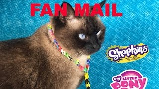 Cinco De Mailo Fan Mail September Opening Unboxing With Shopkins | PSToyReviews