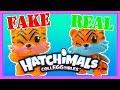 FAKE Hatchimals Colleggtibles VS REAL HOTCHIMOLS mp3