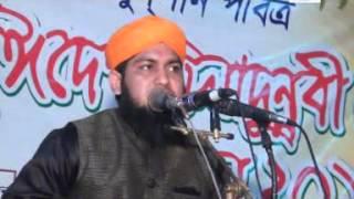 Hasan Nuri bangla waz