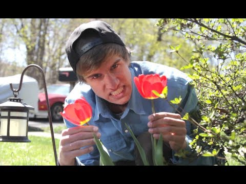 Justin Bieber - Boyfriend (Official Music Video) Parody