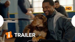 A Caminho de Casa | Trailer Dublado