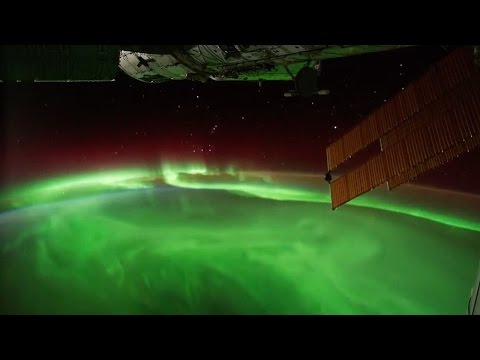 Discovery Of Plankton On International Space Station Baffles Scientists