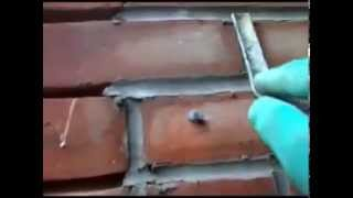 Из шприца_Brick Repointing Injecting useing a cement gun.avi.mp4