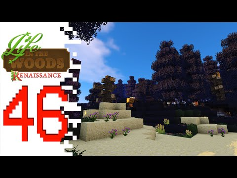 Life In The Woods: Renaissance - EP46 - Afraid Of The Dark (Minecraft)