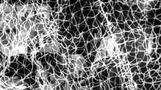 The Man in the Net 1959 -Trailer
