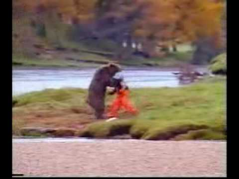 Quot Man Attacks Grizzly Bear Youtube