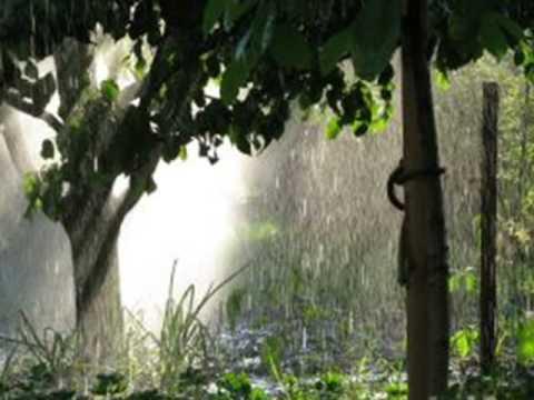Julianne - Let It Rain