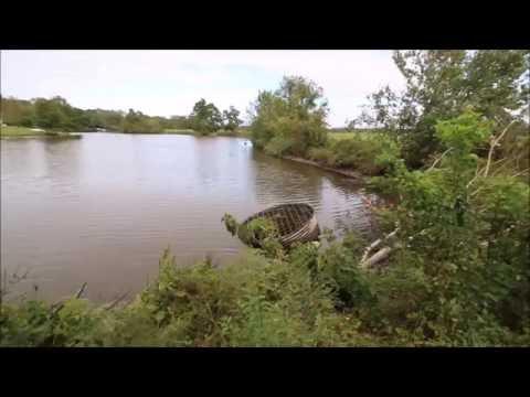Village Creek - Edenton, NC #1