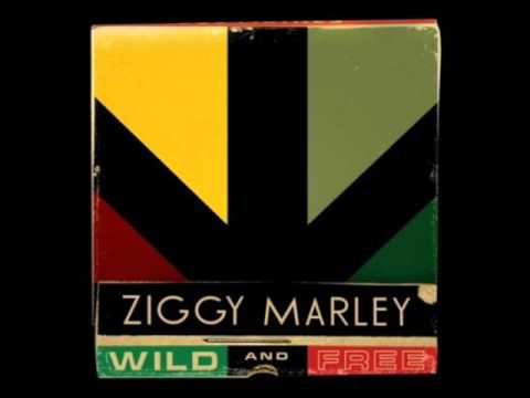 Ziggy Marley - Reggae In My Head