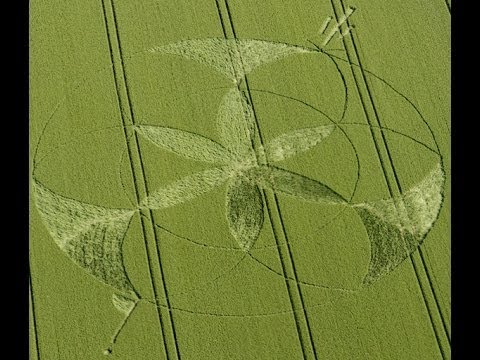 Crop Circle 2012 golden ball hill solsticev2