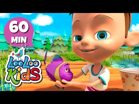 Amazing Songs With Animals  LooLoo Kids