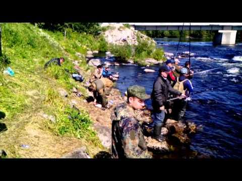 лицензия на рыбалку мурманская область