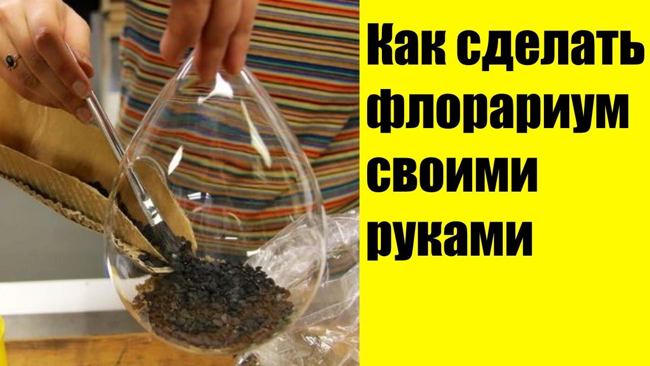 Флорариум своими руками пошаговая инструкция с фото