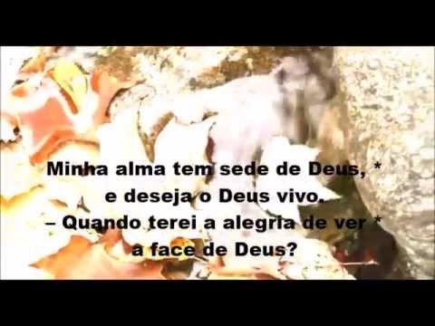 salmo 41