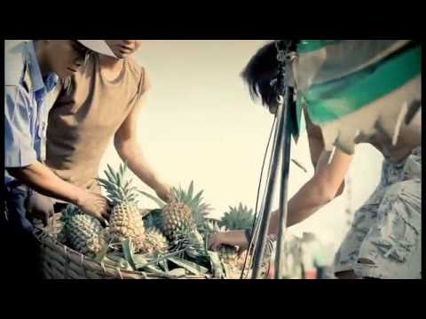 Người Miền Tây   Đan Trường Video Chất Lượng Hd Nhaccuatui Com, Jngnt8jjkorp video