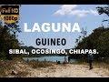 Laguna Guineo - Sibal, Ocosingo, Chiapas, México.