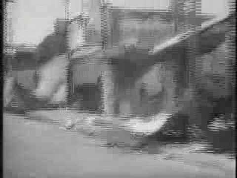 Watts Riots News Reel