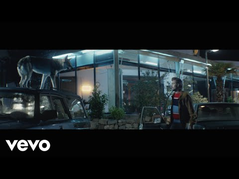 Wild Beasts Big Cat music videos 2016 indie