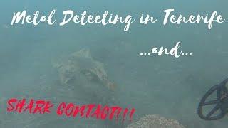 Underwater Metal Detecting and Shark in Tenerife - Canarie Island - Nokta Anfibio Multi - CTX 3030
