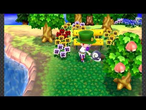 Animal Crossing: New Leaf - Shamrock Day