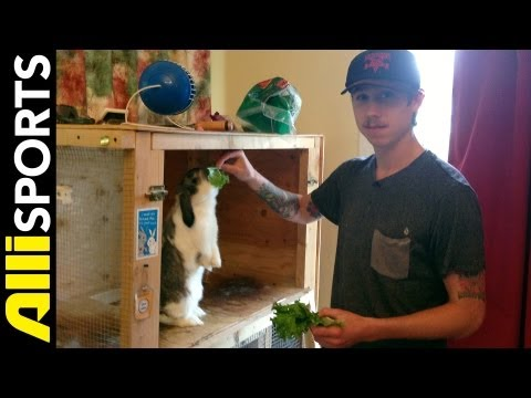 David Gravette's Skate Vid & Gun Collection, Pet Rabbit + Home Tour, Alli Sports Space Invader
