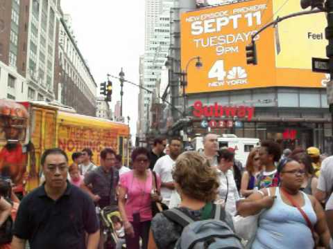 New York City Tourists MSG Animal Terrorism (Vegan Vegetarian Volunteer Protest NOT Peta) 911