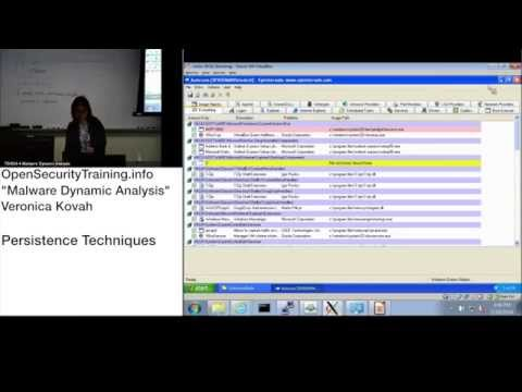Dynamic Malware Analysis D1P14 Persistence