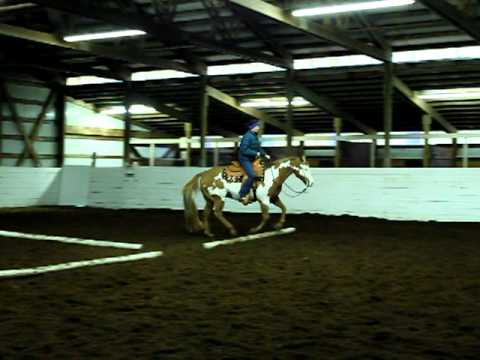 Scribble Me Dixon - 1998 Paint Gelding Sold