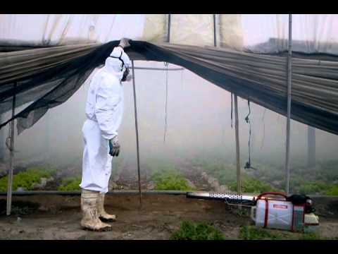 video de PULS FOG en Horticultura1
