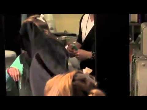Приколы видео черный юмор, розыгрыш в парикмахерской жесть, ржака 2013