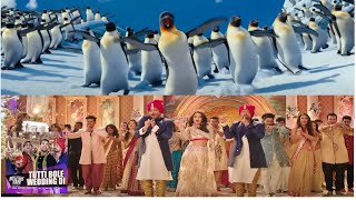 Penguins dancing for Tuti Bole wedding di bollywood song