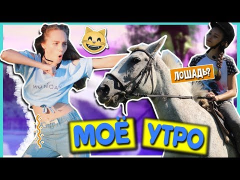 Влог: МОЕ УТРО + КОНКУРС + СИГНА | Marisha MT / покатушки / позитив / мотивация / покупки / на коне