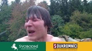 Český Politický Bizár Komplikace - Volby do Senátu 2016