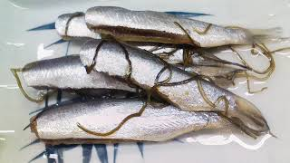 Sardine (food) | Wikipedia audio article