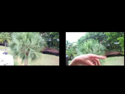 Piviothead Camera Review Delaware Digger 1080p
