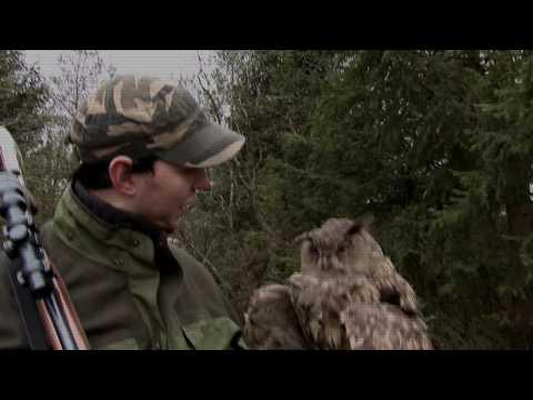 Celoroční lov