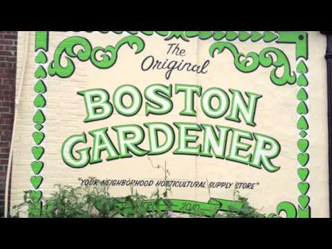 Grow Shops in Boston MA: Boston Gardener &#038; General Hydroponics